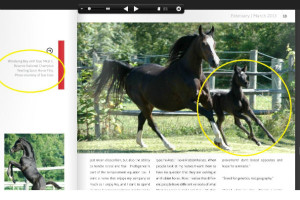 Mirai C ASH Magazine 1