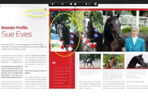 Mirai C ASH Magazine 2