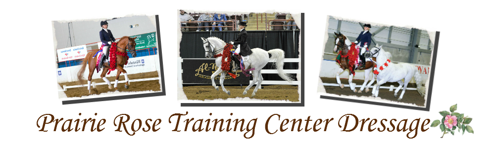Prairie Rose Training Center Dressage