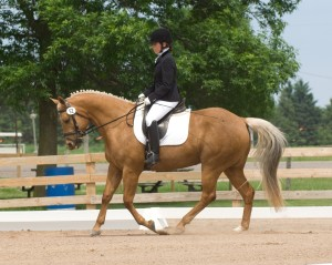 Bobbi and Paq - canter. Photo by Ellis Photography.