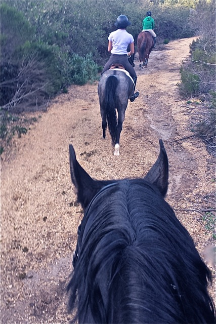 Urban trail ride in San Diego